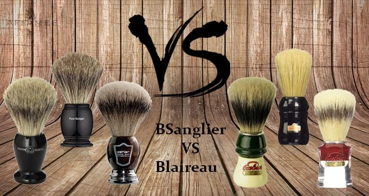 Sanglier VS Blaireau